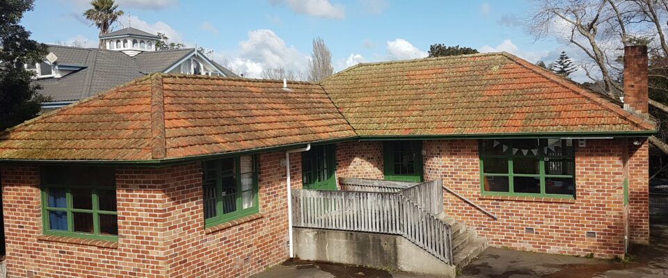 Roof Cleaning - Moss, Algae and Lichen on Clay Tile Roof