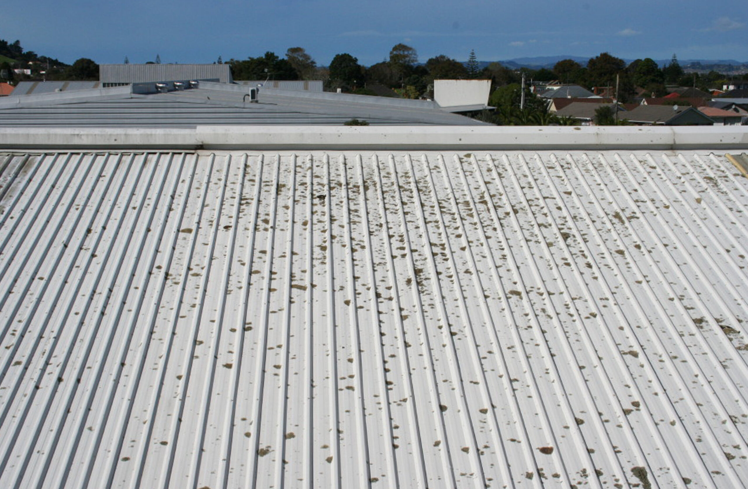Roof Cleaning - Moss, Algae and Lichens on Industrial Colorsteel roof