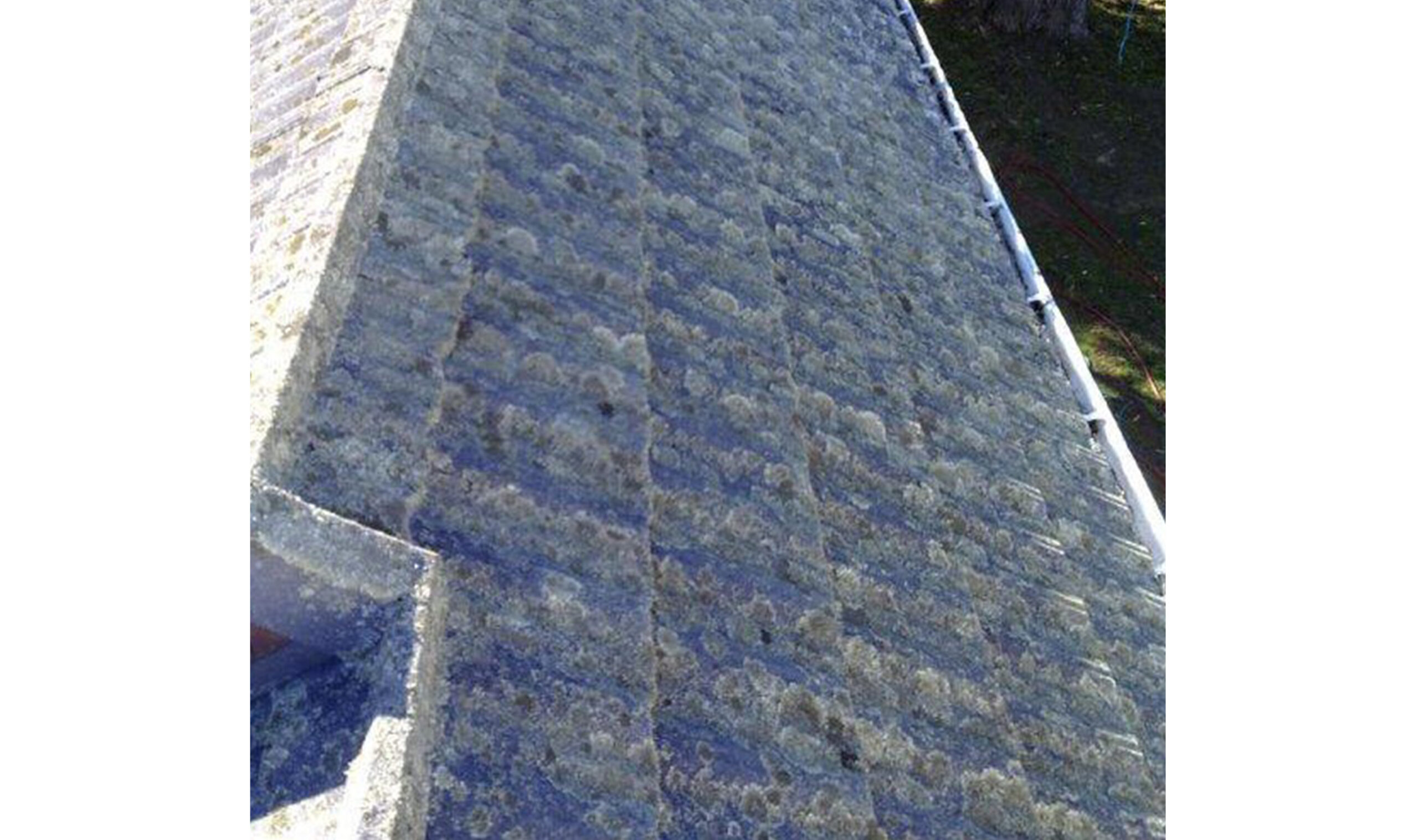 Roof Cleaning - Gerard tile roof with heavy lichen growth